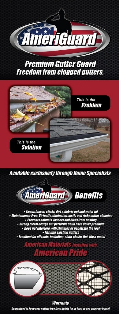 AmeriGuard Website Section