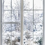 Home vinyl insulated windows with winter view of snowy trees and